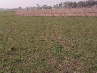 16 Bigha Land for sale on NH6