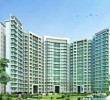 3 BHK LUXURIOUS APARTMENT