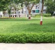 APARTMENT FOR SALE IN SAFAL PARIVESH