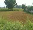 N.A Land for Sale In Racharda