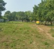 N A Plot For Sale in Shilaj