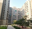 3 BHK Flat for Sale in Gala Aura, Ahmedabad
