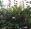 3 Flat for Sale in Binori Moneta, Vastrapur, Ahmedabad