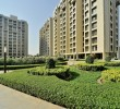 2 BHK flat for Sale in Orchid Whitefield, Makraba, Ahmedabad