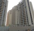 4 BHK Flat for Rent in Orchid Harmony, Applewoods, Bopal, Ahmedabad
