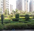 3 BHK Flat for Sale in Orchid Whitefield, Makraba, Ahmedabad
