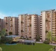 3 BHK Apartment for Sale in Maple Tree, Drive In, Ahmedabad