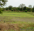 Land for sale in Narsapur Hyderabad