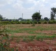Plots for Sale at Attibele Jigala Just 400Mts to Highway