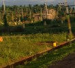 Site For Sale in Guluru